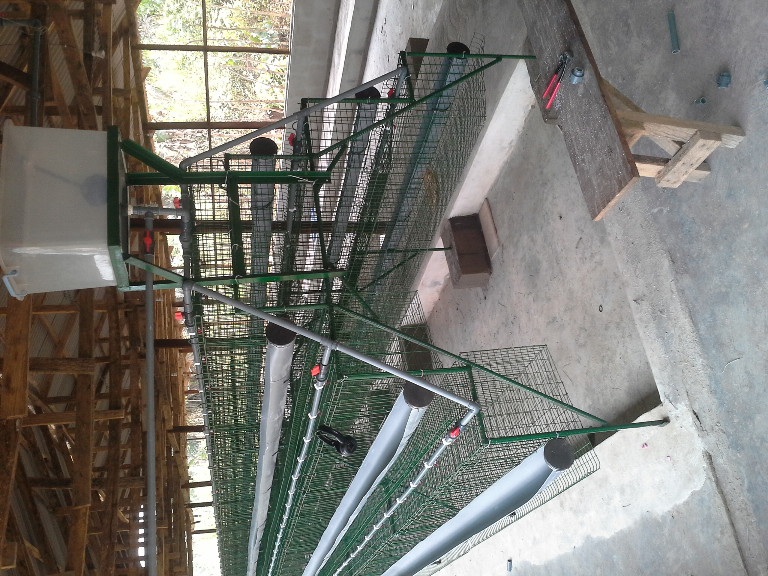 QUALITY BATTERY CAGES