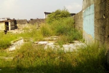 Investor's delight: One plot of land in a developed area in Ajah